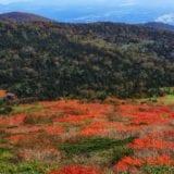 【関東】登山初心者におすすめの山9選!日帰りで気軽に山登りしよう
