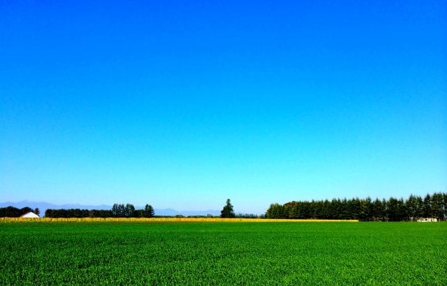 初めての北海道旅行で行きたい!おすすめ観光3選&グルメ6選