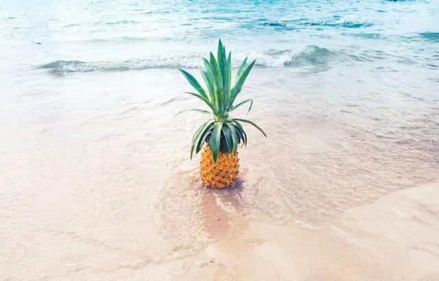 ハワイ憧れのおすすめホテル5選!贅沢リゾートステイを叶えよう