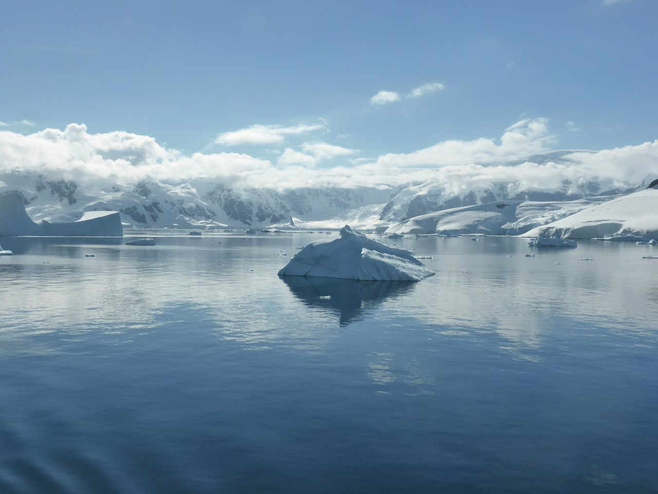 氷の下へ潜ろう!北海道の知床で流氷ダイビングにチャレンジ