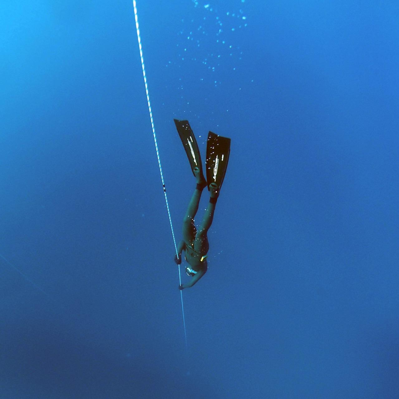 フリーダイビングとスキューバダイビングの違いと必要な費用!