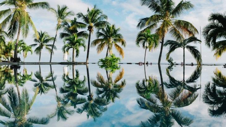 初めての海外女子旅はハワイへ!後悔無く楽しむ3つのポイント