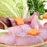 魚を使ったおすすめ鍋レシピ19選|旨味たっぷりで冬に食べたい!