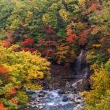 和歌山の美しい紅葉名所5選! 帰りに立ち寄りたいスポットも