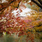 九州の絶景紅葉スポット厳選5選と立ち寄りたいスポット情報