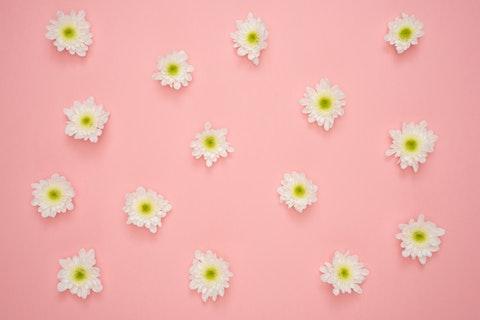 押し花を使ったiPhoneケースの実例11選!100均でも簡単おしゃれに♡