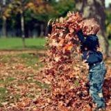 秋のデートや家族のおでかけに!関西の秋祭り&イベント14選
