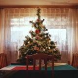 今年のクリスマスツリーはどれにする?サイズ別人気ツリー13選