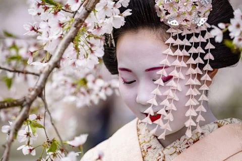 日本の情緒あふれる京都の桜を名所で満喫
