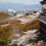 【2019年】京都の桜の名所6選|お花見で人気のグルメとお土産情報も