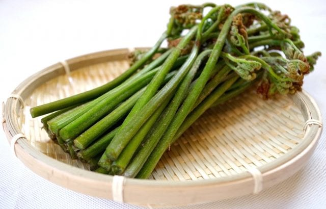 春の山菜ワラビで常備菜から主菜まで♪下処理法とレシピ15選