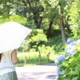 2020年おすすめ日傘はコレ|おしゃれ女子に人気なアイテム12選