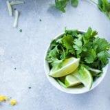 パクチー絶品レシピ12選|パクチー好きを絶対に満足させる料理はコレ!