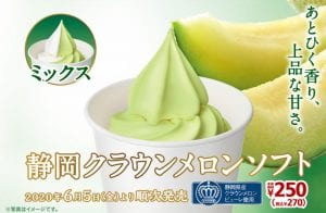 MS melon soft serve