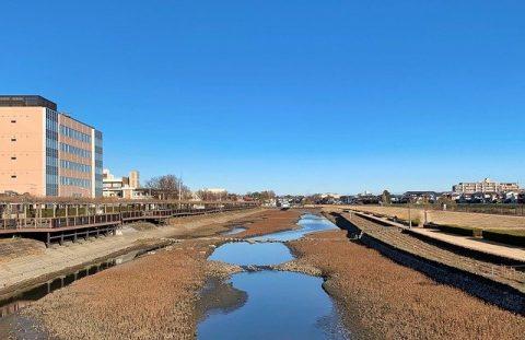 電車で行ける埼玉県のキャンプ場おすすめ3選