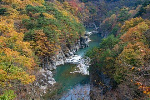 電車で行ける栃木県のキャンプ場おすすめ3選