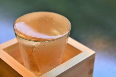 ふるさと納税で人気の日本酒がもらえる