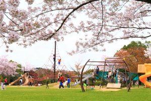 子どもも楽しめる「香久山公園」