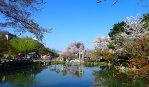 円山公園(まるやまこうえん)|桜を愛でる随一の行楽地