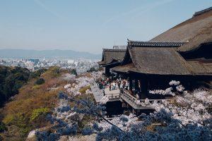 清水寺|ピンクと緑に色付く世界遺産